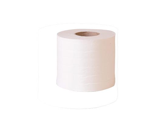 נייר טואלט מוסדי